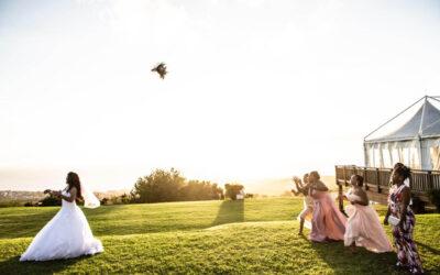 Bonne année 2018 XXX FAQ décalée mariage green